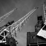Cranes reaching high
