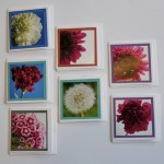 Mini Flower Cards