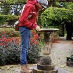 Brodick Gardens