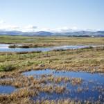 Across Loch Leven