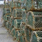 Crabbing Nets Waiting