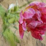 Tulip on crumpled paper