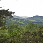 View North from Glentress