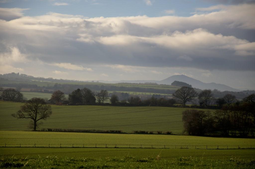 View towards the Wrekin