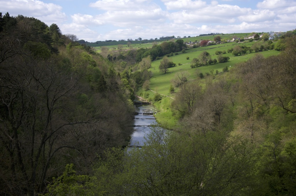 River Lathkill, from Over Haddon